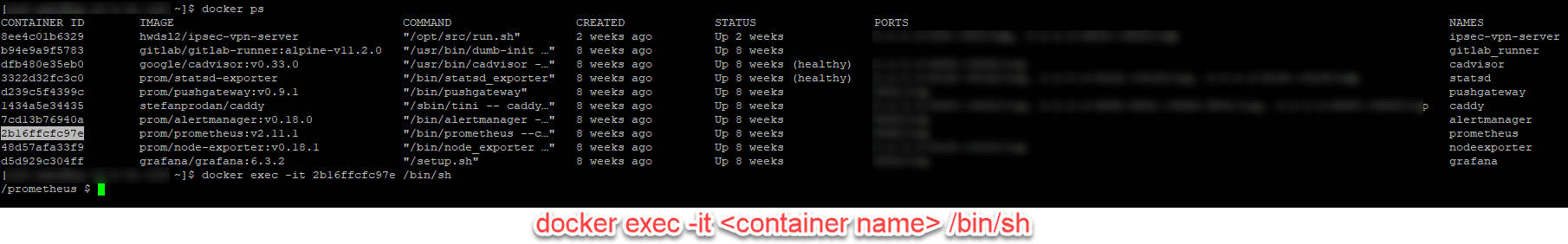 docker exec -it Example Output