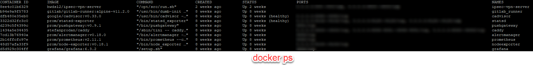 docker ps Example Output